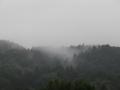 桜ケ岡からの見た青葉山
