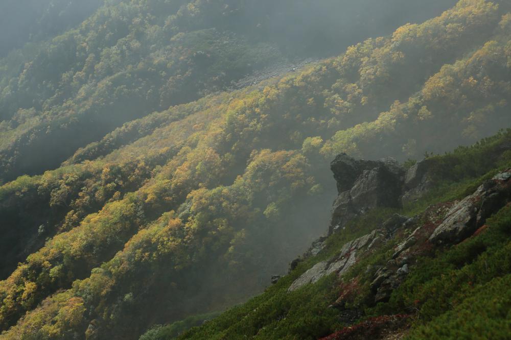 秋色の尾根