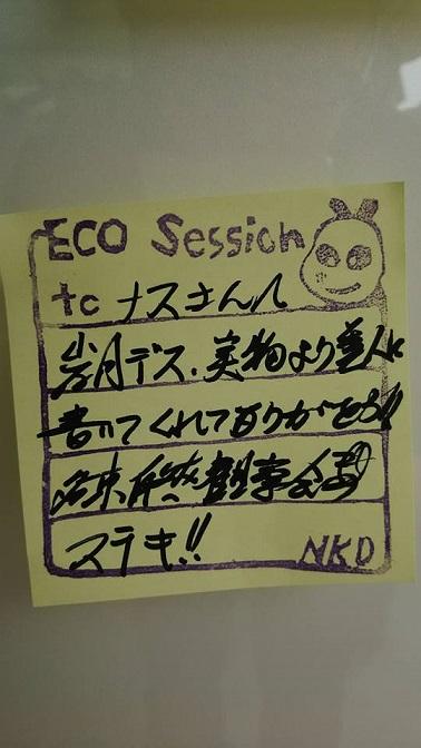 環境デーなごや2016 (13)