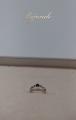 カメちゃん指輪
