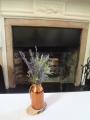 食卓の植物