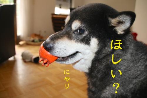 かまってちゃんロザ編8