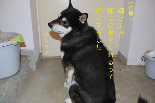 ロザ花火編4