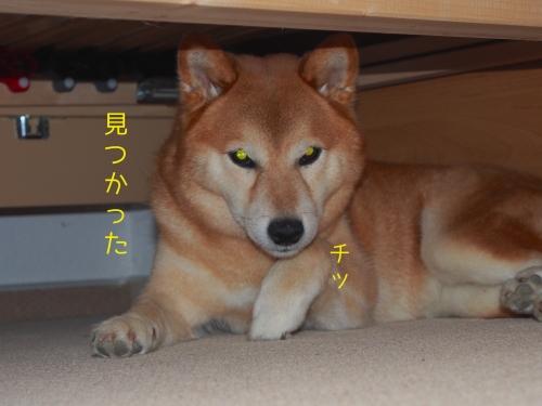 客室ベッドの下2