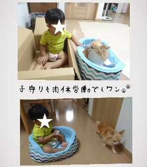 blog2016080301.jpg