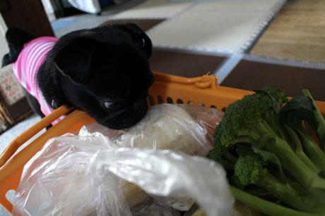 どれどれお野菜