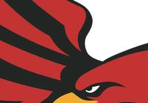 T-shirt Firebird