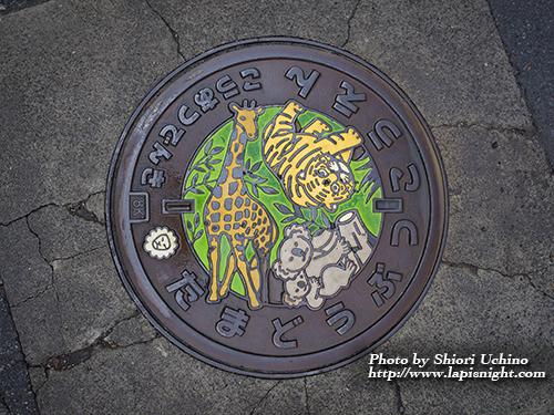 【東京都 多摩動物公園 高圧電気マンホール】