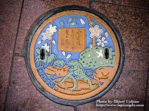 【東京都 足立区 マンホール -やせ蛙-】