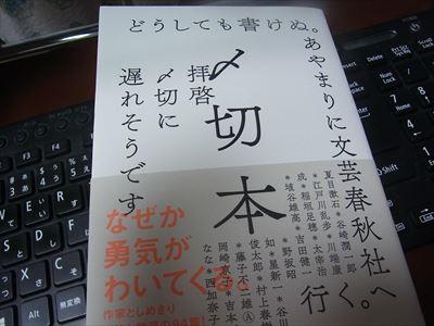 RIMG0421_R.jpg