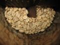 コロンビアサンアウグスティンスプレモ生豆