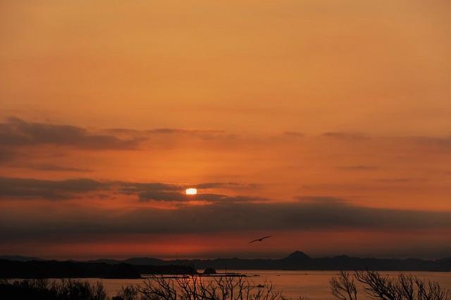 城ケ島公園で見た日の出