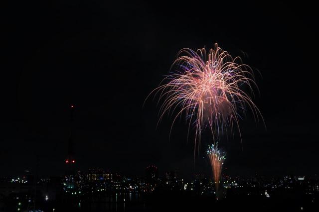 2016 鶴見川サマーフェスティバル花火大会(3)