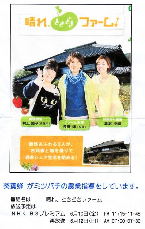 葵養蜂TV