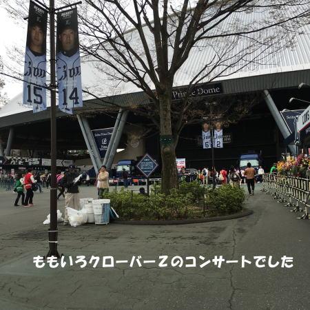 2016-04-05_6.jpg