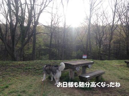 2016-04-06_2.jpg