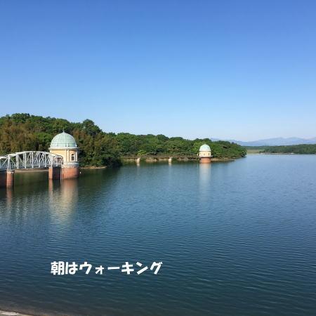 2016-05-09_2.jpg