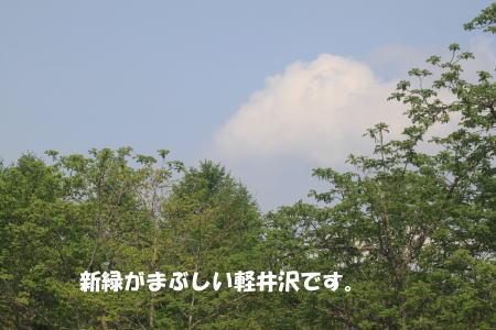 2016-05-16_2.jpg