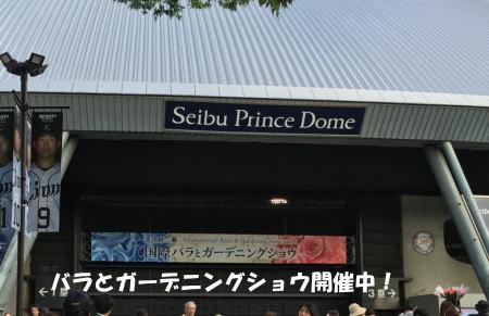 2016-05-16_7.jpg