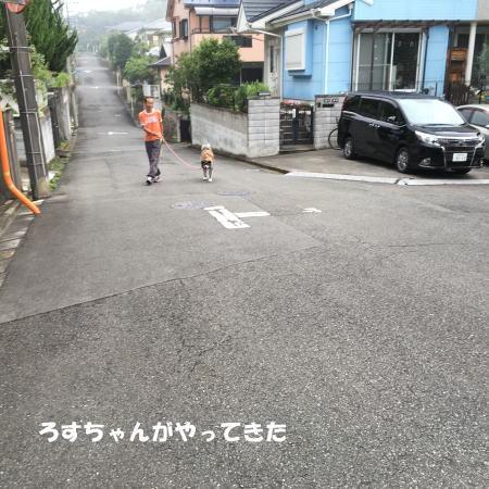 2016-07_14_2.jpg