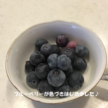 2016-07_14_5.jpg