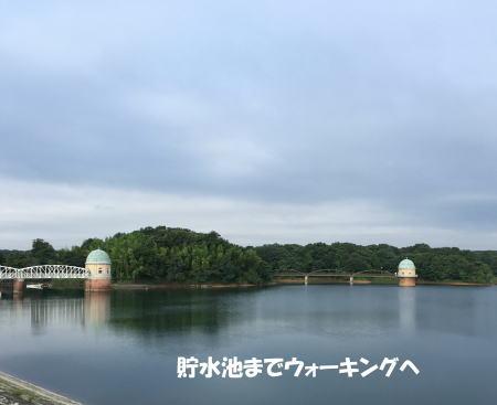 2016-07_17_1.jpg