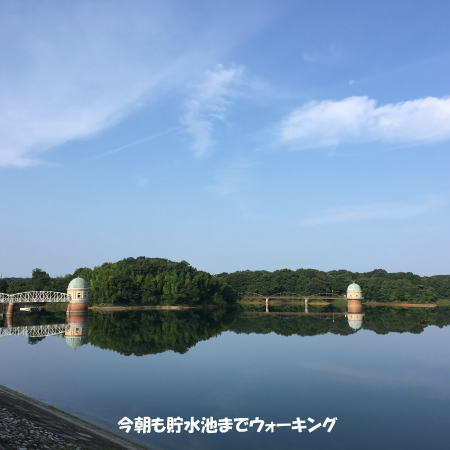 2016-07_24_1.jpg