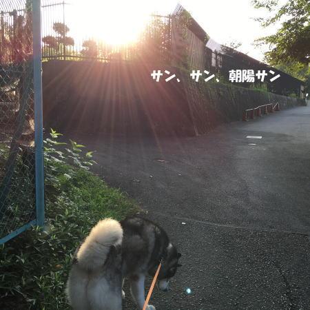 2016-08_04_2.jpg