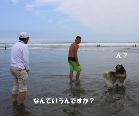 2016-08_17_2.jpg