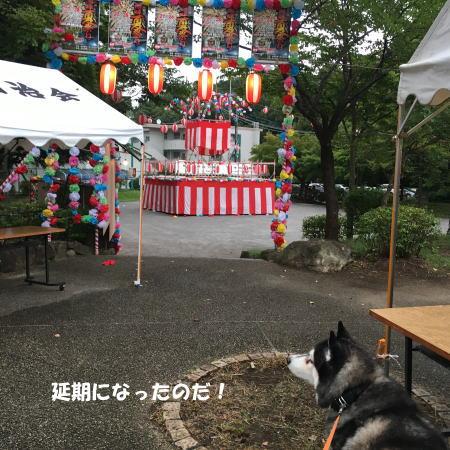 2016-08_31_2.jpg