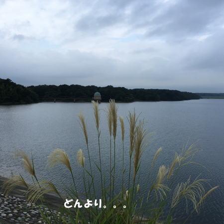 2016-09_14_1.jpg