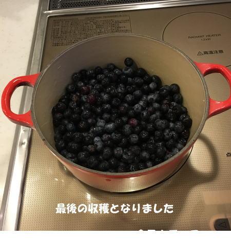2016-09_19_4.jpg