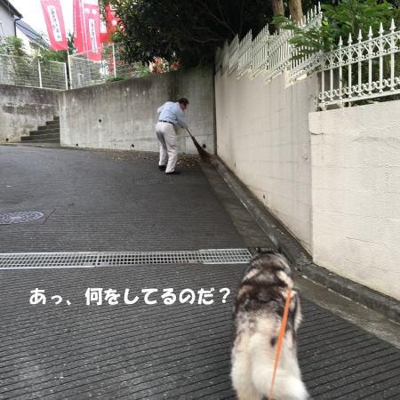 2016-09_26_3.jpg