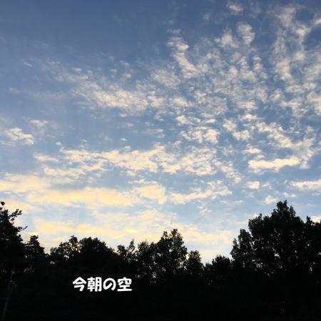 2016-10_07_1.jpg