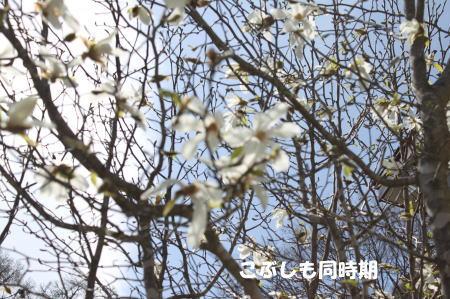 2016_0424_6.jpg