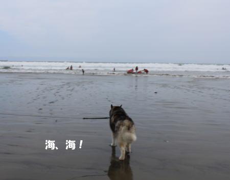 2016_0815_23.jpg