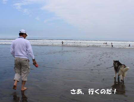 2016_0815_24.jpg