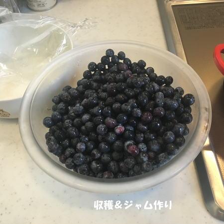 2016_0904_2.jpg
