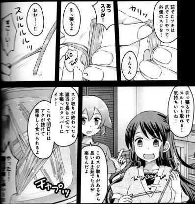 soushoku160612-1.jpg