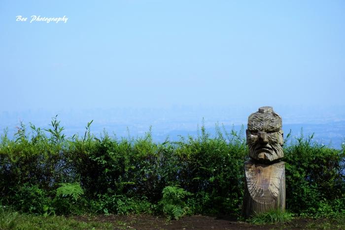 bee-小仏城山0398