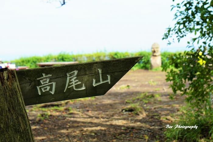 bee-小仏城山0399