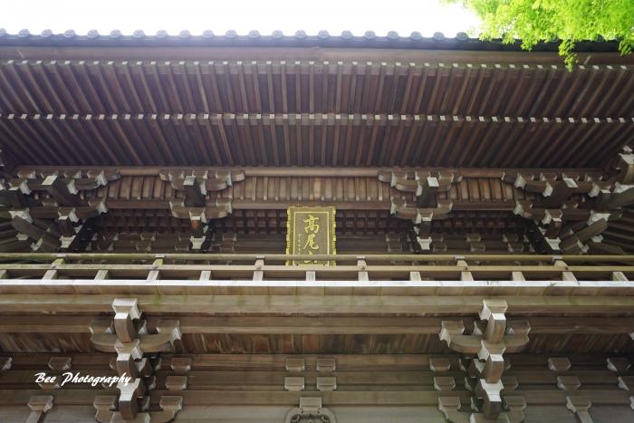 bee-高尾山8341