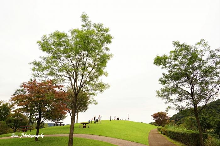 bee-愛川公園2067