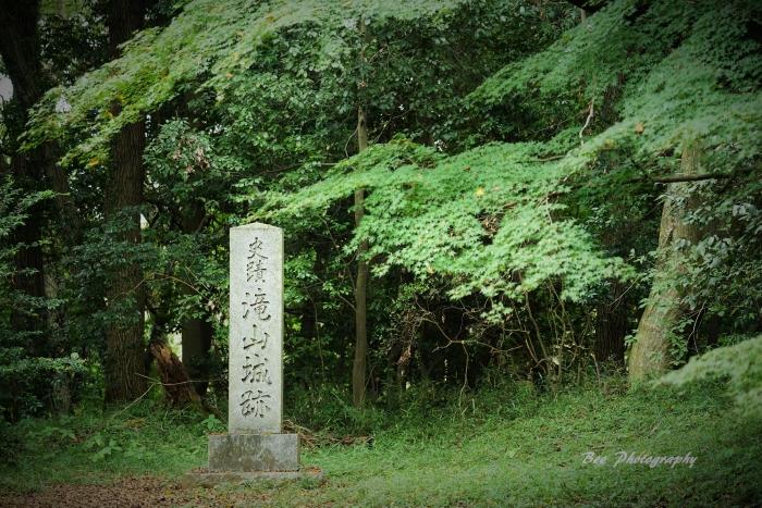 bee-滝山城跡2255