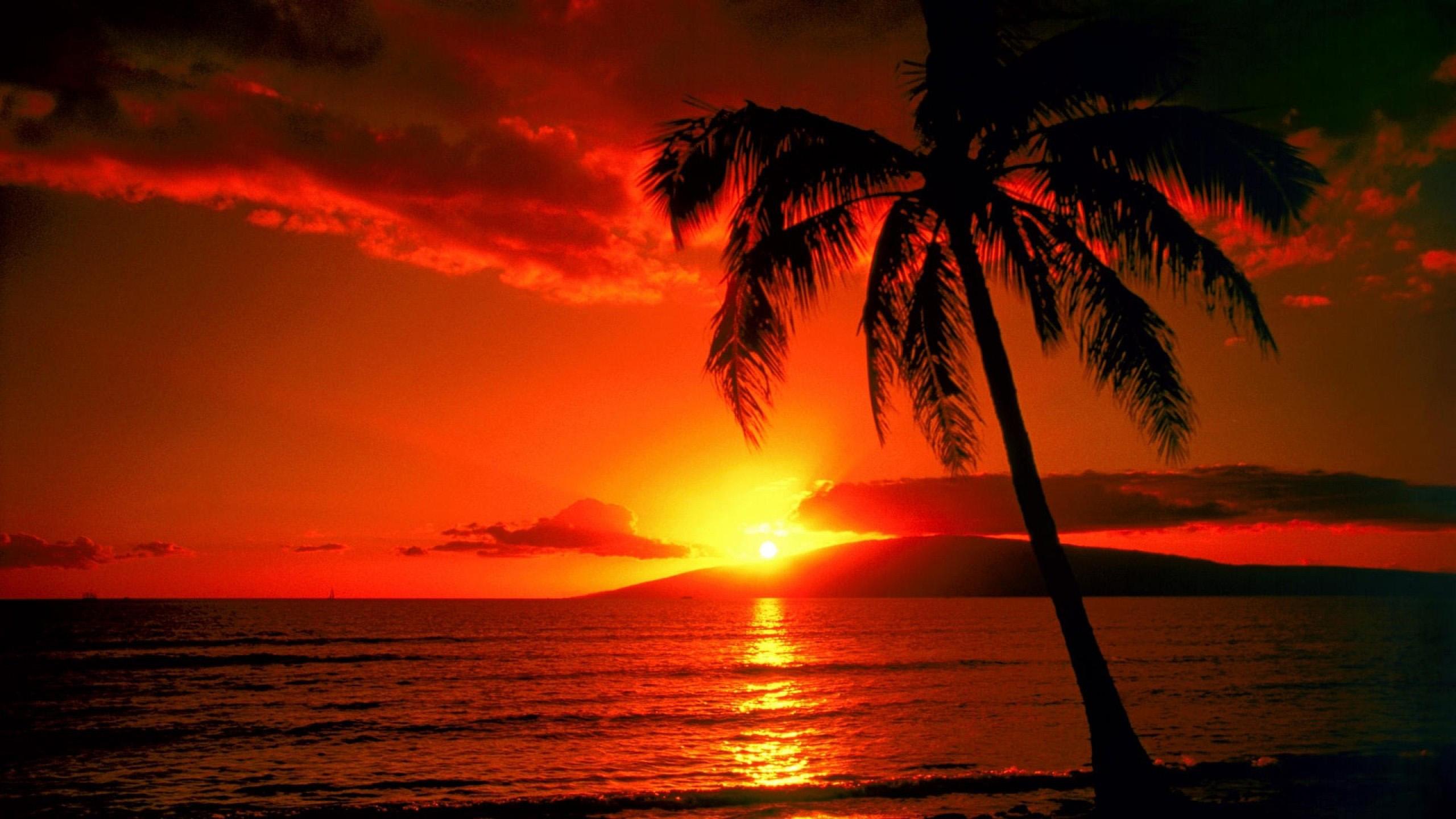 HawaiiSunsetHoneymoon.jpg