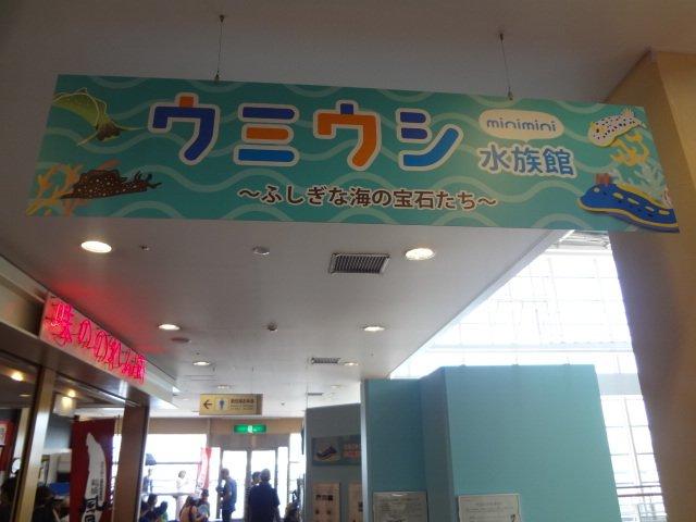 asinngojiratopokemonn10.jpg