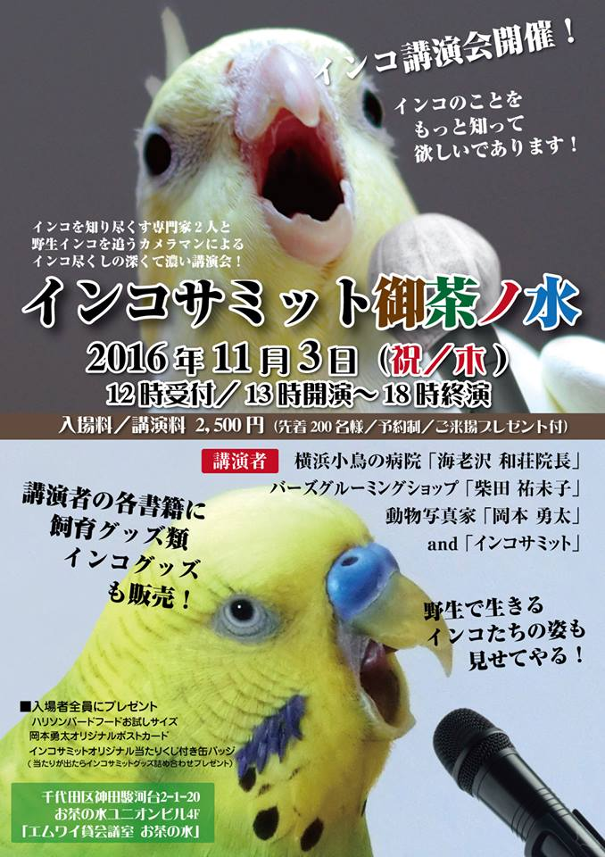20161103インコサミット御茶ノ水1