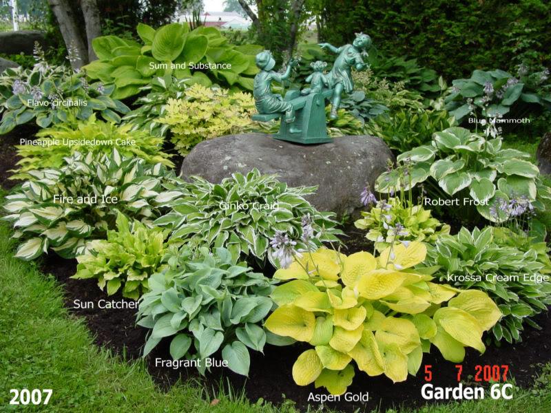 Garden6C2007pic1.jpg