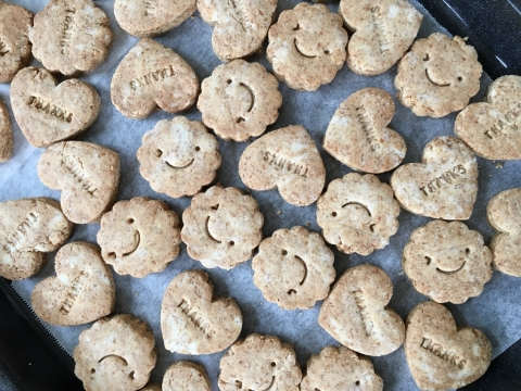 1605komekocookie (1024x768)