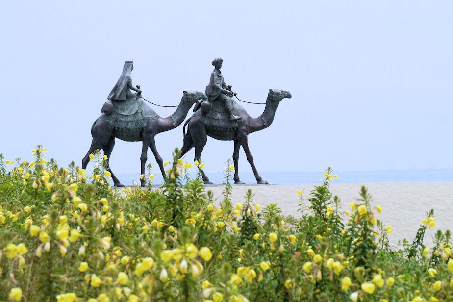 マツヨイグサ月の沙漠像